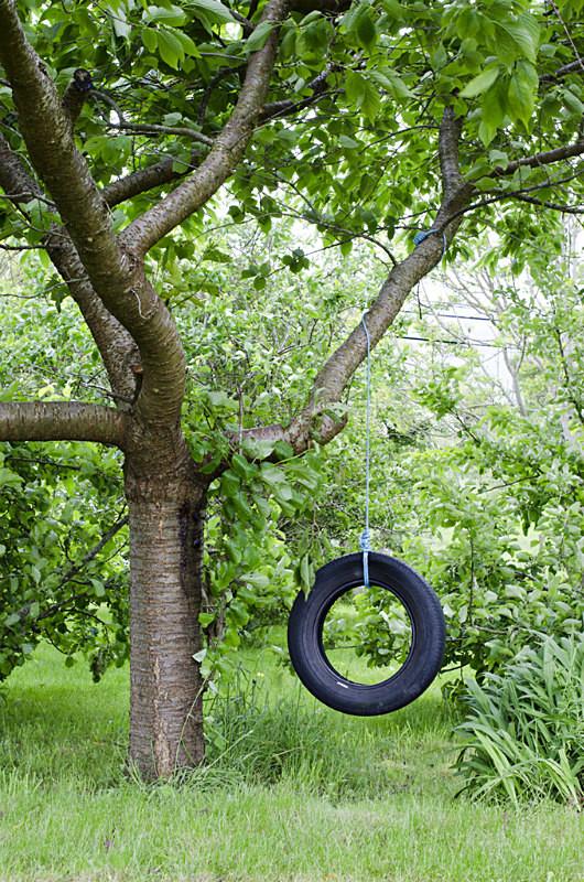 6 - Tyre Swings