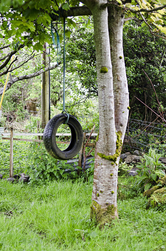 9 - Tyre Swings
