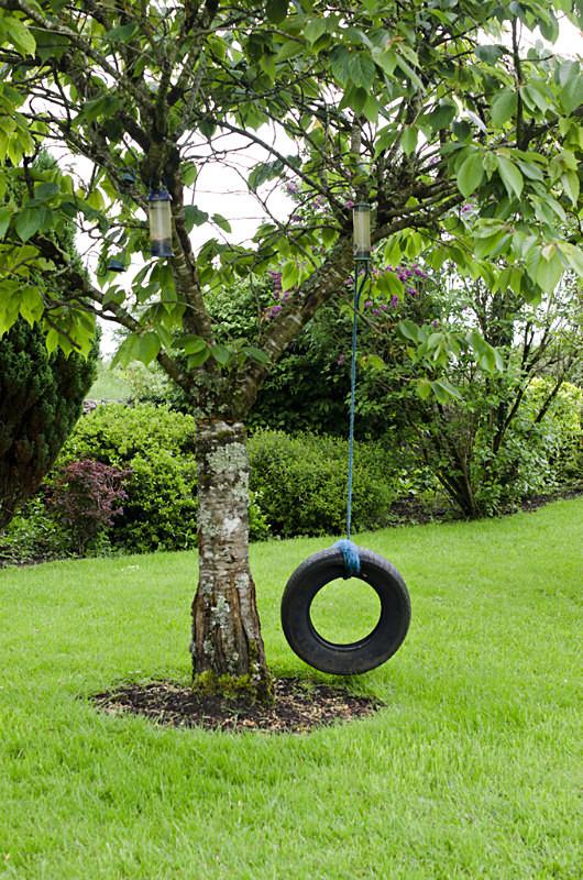 3 - Tyre Swings