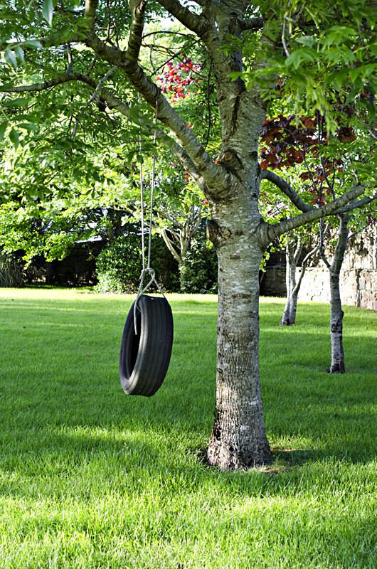 10 - Tyre Swings