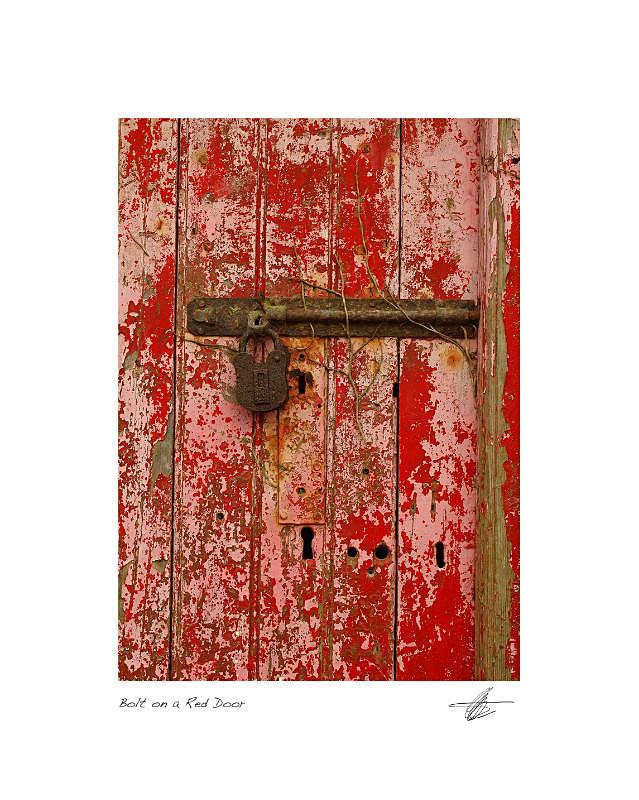 Red Door - Derelict Ireland