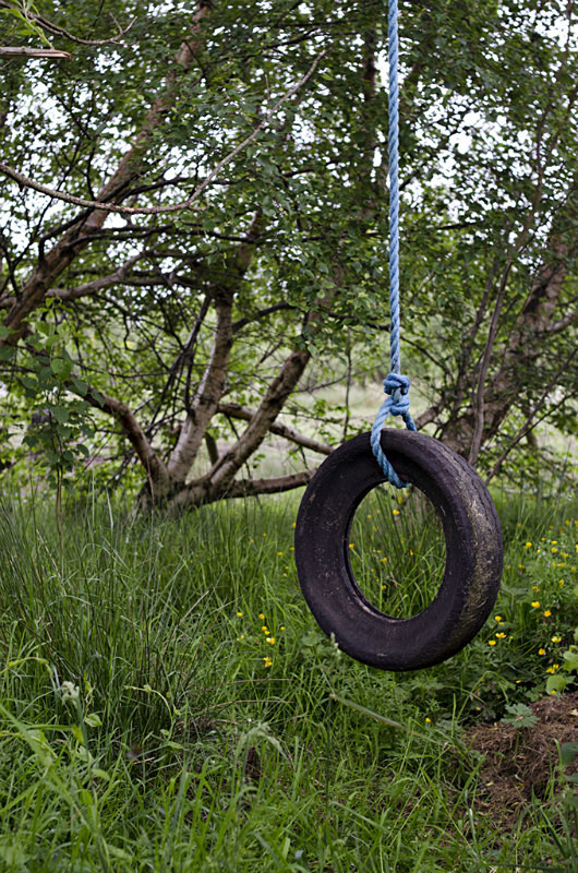 5 - Tyre Swings