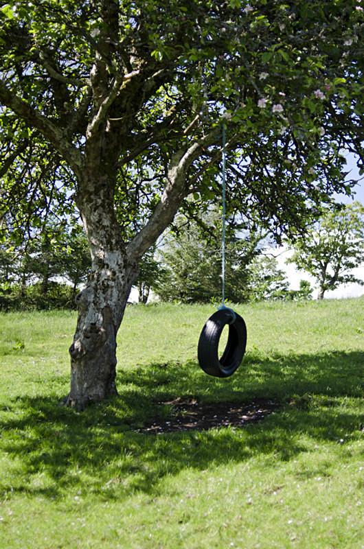 13 - Tyre Swings