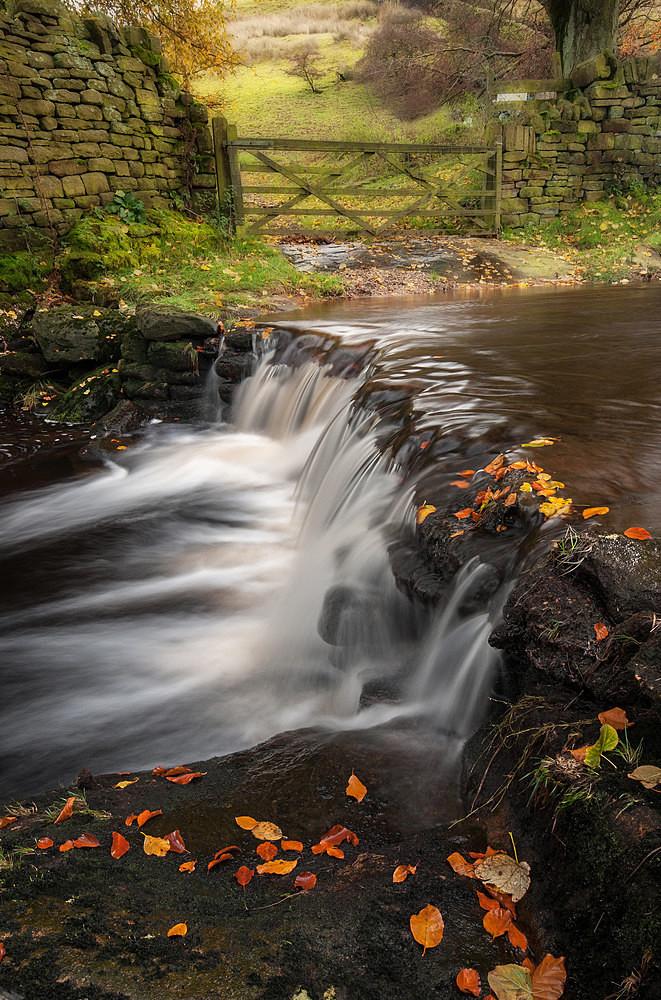 Eastergate Autumn - Waterfalls