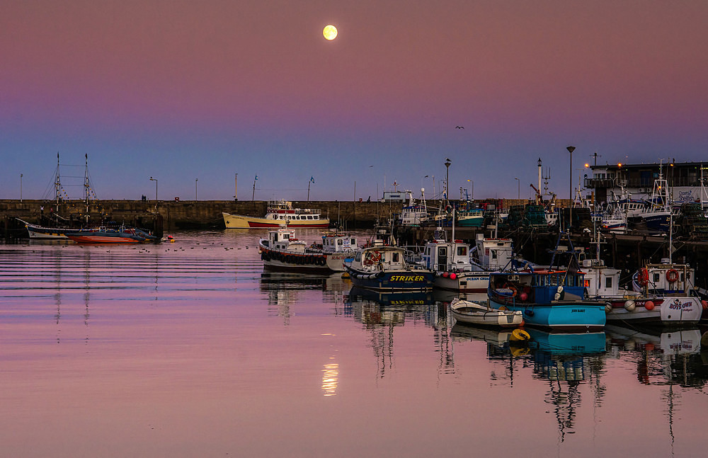 Moonlit Harbour - Yorkshire