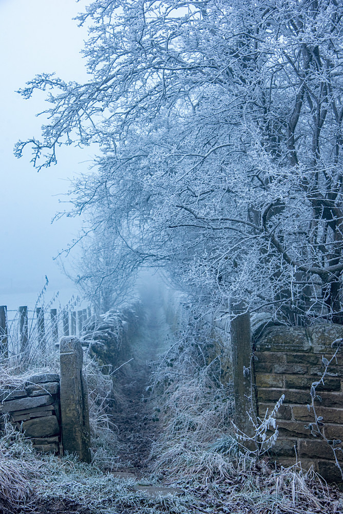 The path to......? - Yorkshire