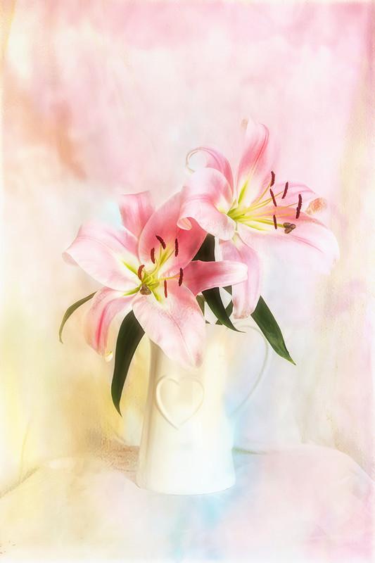 Flowers in a Vase - Various