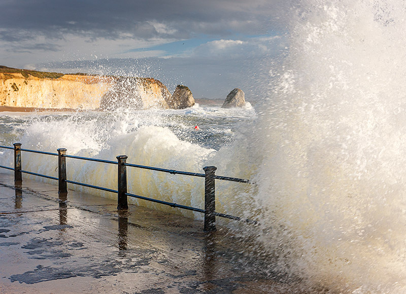 1361 Freshwater Bay - Freshwater & Tennyson Down landscapes