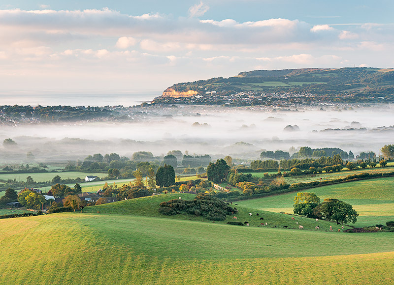 1335 Overlooking Shanklin - Sandown, Shanklin and Godshill landscapes