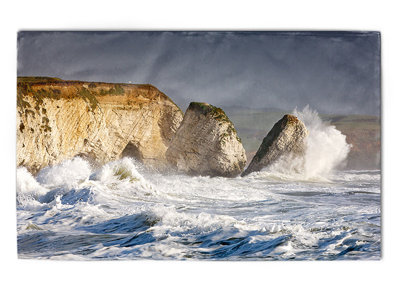 Freshwater Bay tea towel - Tea towels