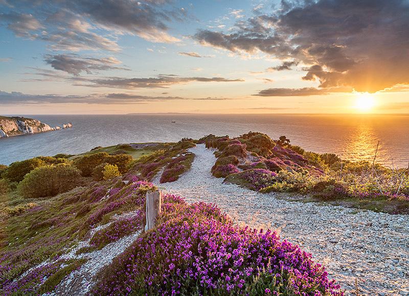 1256 Headon Warren - Alum Bay and The Needles landscapes