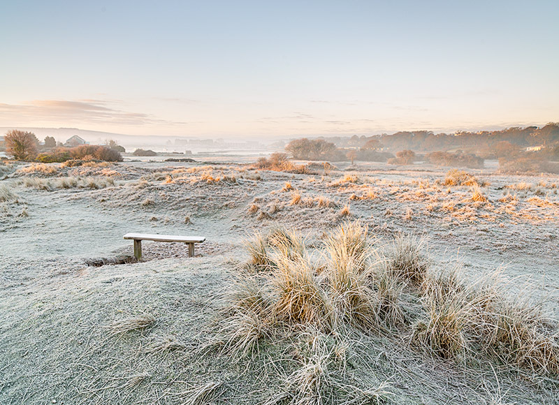 1463 Frosty Morning The Duver - Bembridge and East Wight landscape