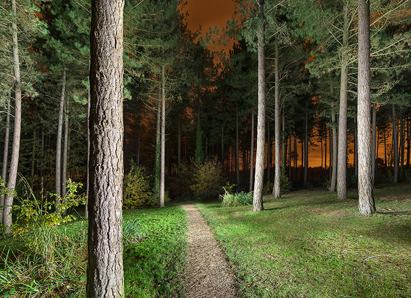 1351 Parkhurst Forest - The Isle of Wight at Night landscapes