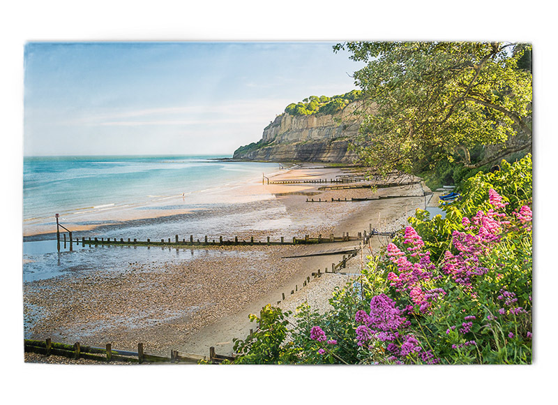 Shanklin tea towel - Tea towels