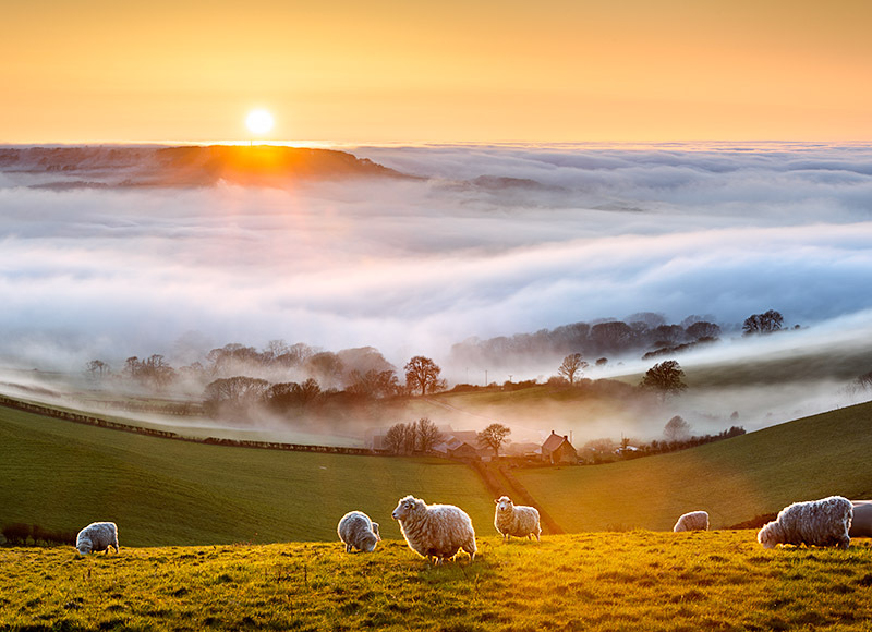1822 Fog Stenbury Down - Compton and West Wight landscapes