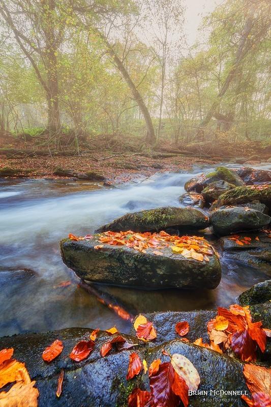 The mist falls - Scottish landscapes