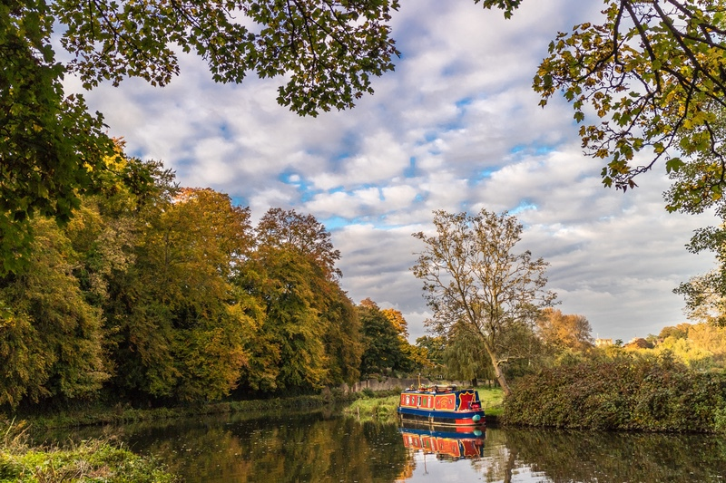 Moored on the Wey, Guildford, Surrey - London, Surrey, Sussex, & Yorkshire