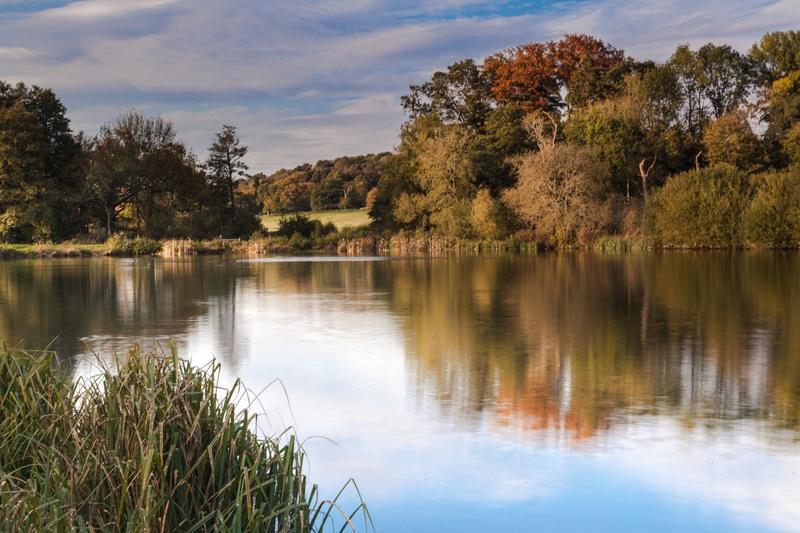 King's Lake, Panshanger - Hertfordshire