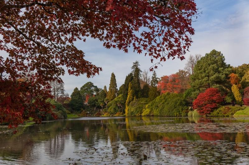 Autumn Colour at Sheffield Park, East Sussex - London, Surrey, Sussex, & Yorkshire