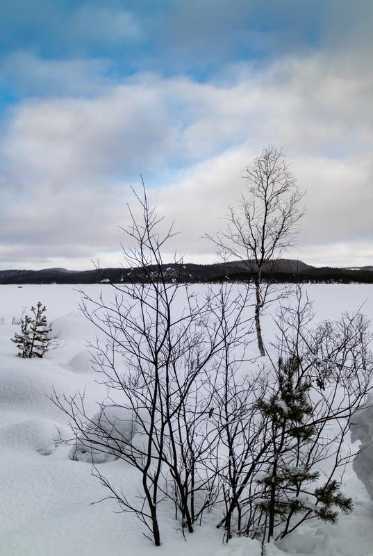 In Winter's Grip, Finnish Lapland - Finland