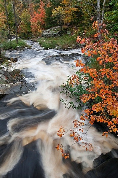 Go with the Flow - AUTUMN COLOURS