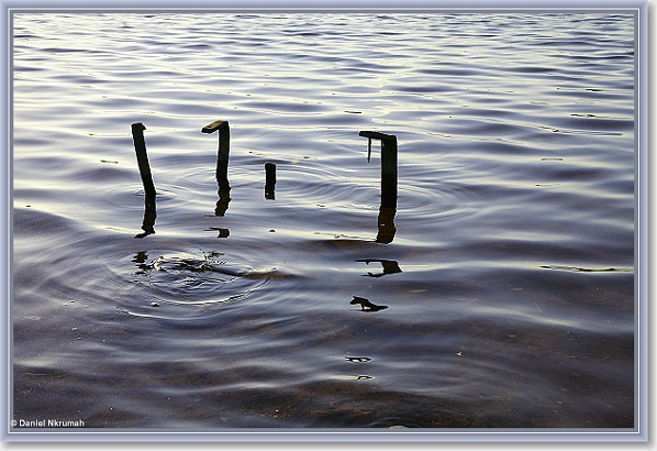 The Loch Ness Clan - Abstracts