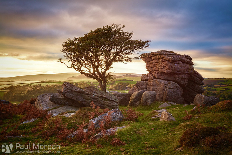 Dartmoor Delight - Landscape (Horizontal)