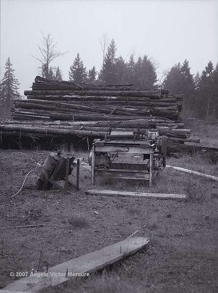 403 - Shingle Mill