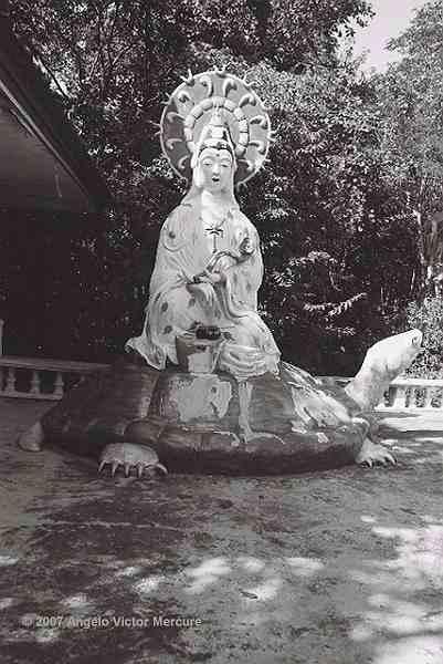 711 - Buddhist Hell Imagery
