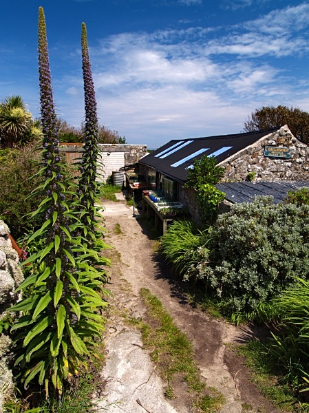 The Bulb Shop, St Agnes - Isles of Scilly