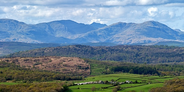 South Cumbrian Fells #1 - Cumbria