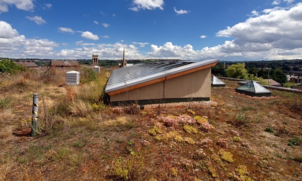 Sharrow School's Green Roof - Sharrow School's Green Roof