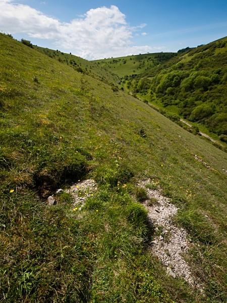 Deep Dale #10 - Deep Dale Nature Reserve