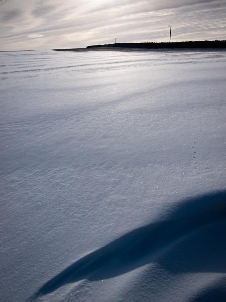 Snow - Winter