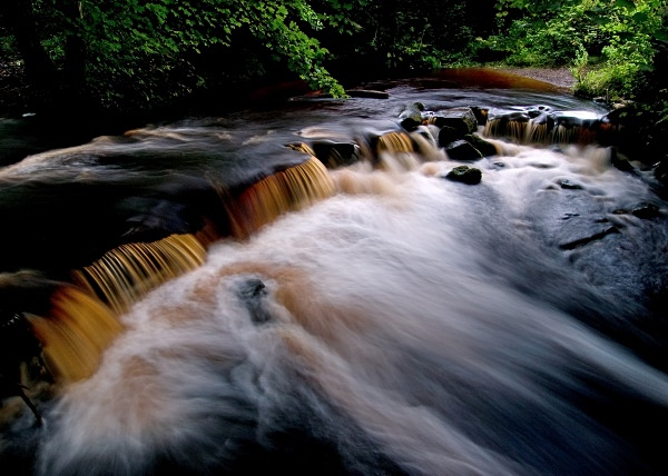 River Rivelin (01) - Yorkshire