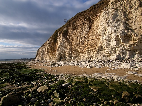 Flamborough Head - Yorkshire