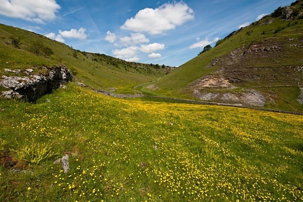 Cressbrook Dale photographed by Roger Butterfield