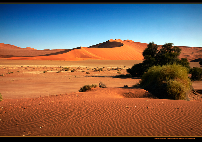 100321-Namibia-9900-Dunes - Beyond the UK - Namibia