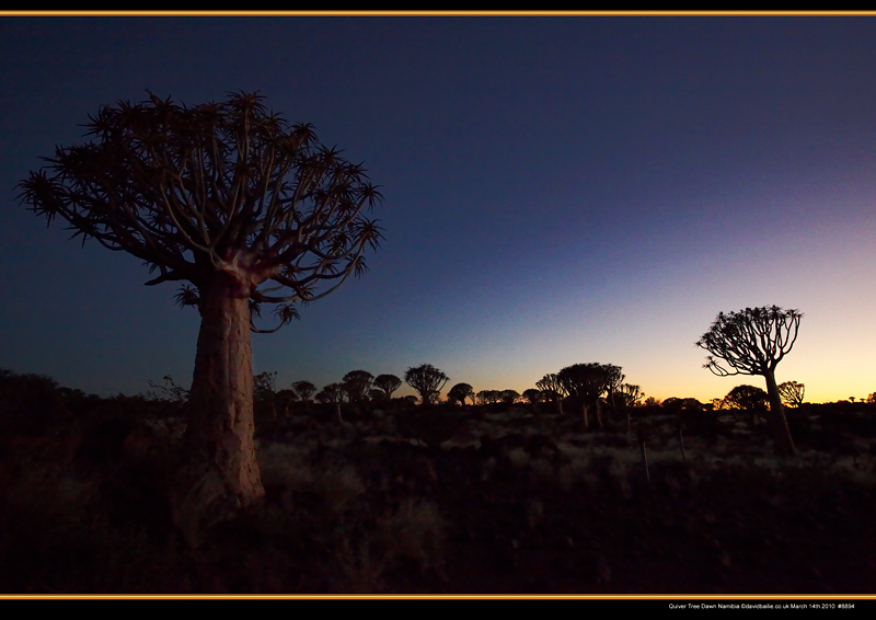 100314-Namibia-8894-QiverDawn - Beyond the UK - Namibia