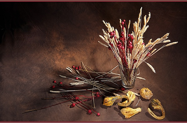Dried Goods - Still Life