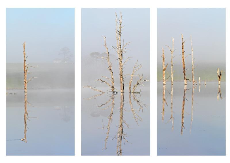 Mannus dawn - Triptychs