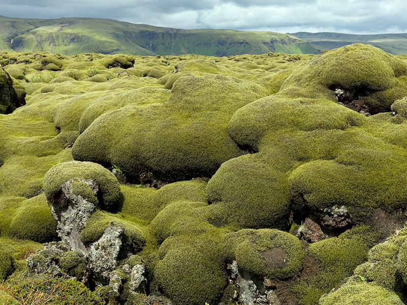 Eldraun - Iceland landscapes