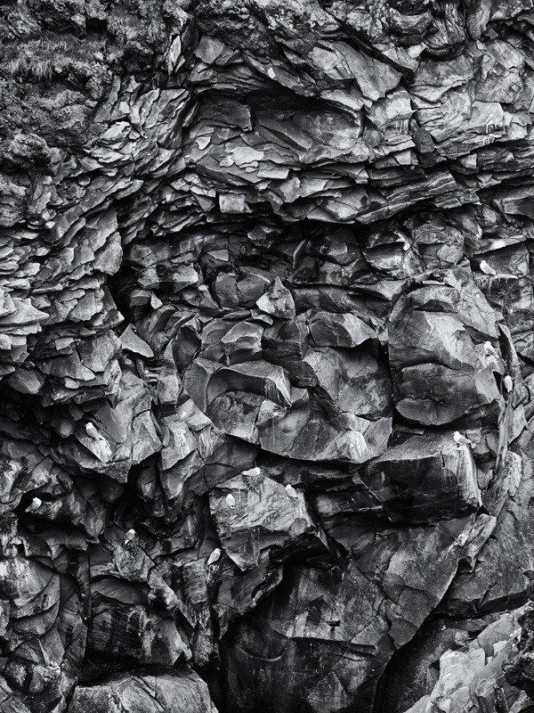 Hellnar nesting - Black and White