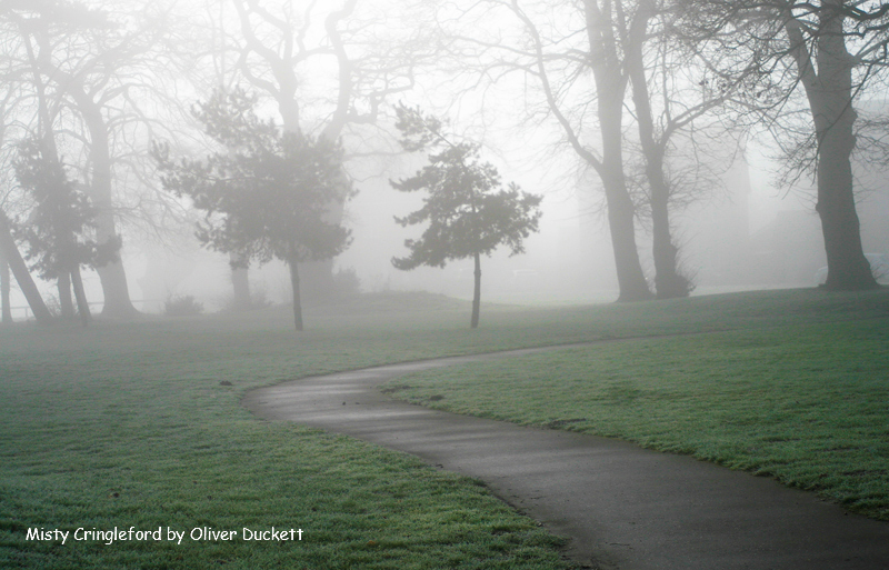 Roundhouse Park, Cringleford - Ollie's Landscapes Gallery