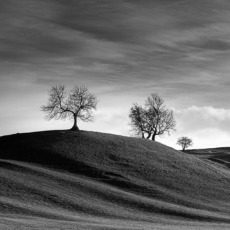 - The UK landscape - monochrome