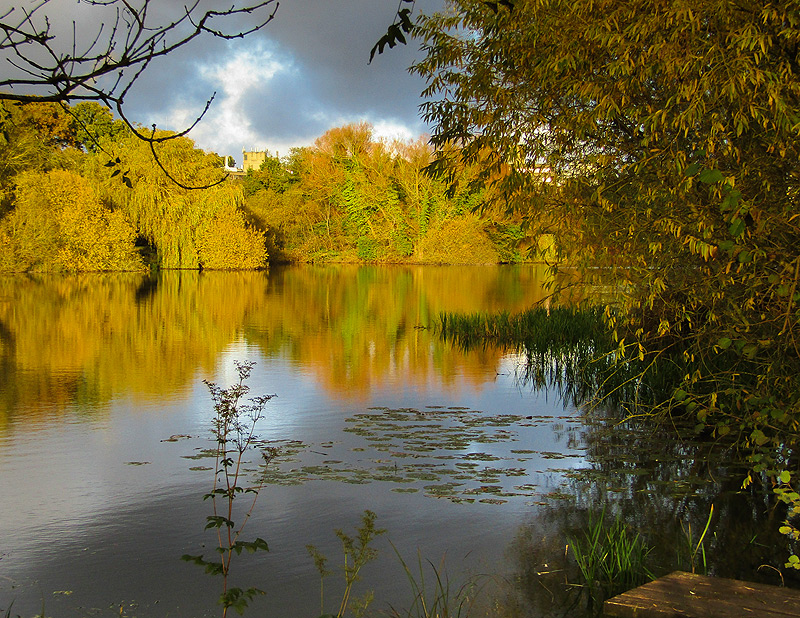 Norfolk landscape photograph of UEA Lake
