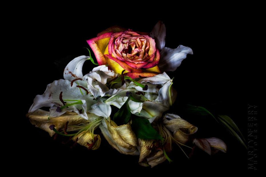 Fine art flower photography of a rose and lillies