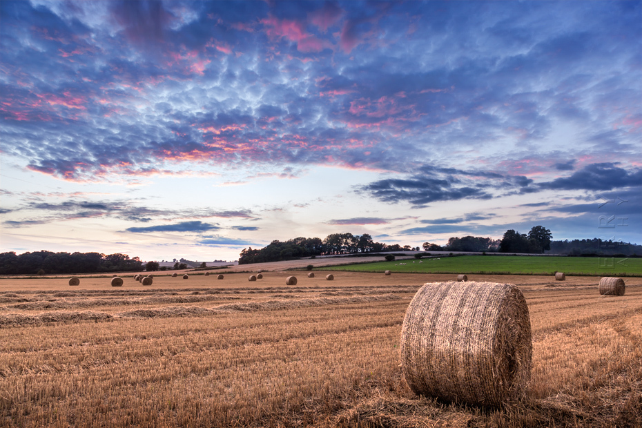 Photograph of hay bales at sunset in the Cotswolds