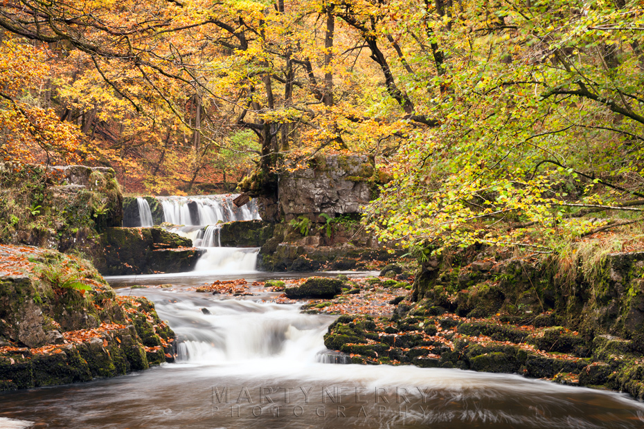 Golden leaves over the falls of Sqwd y Bedol in Wales