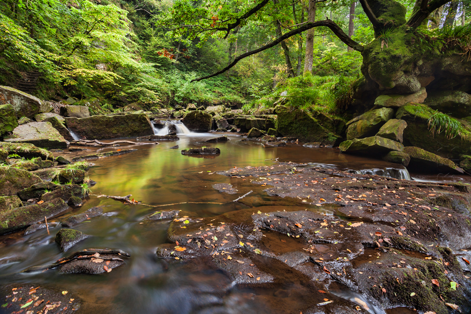 Woodland image of the beautiful river of West Beck at Goathland